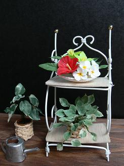 Wirerack & Plants